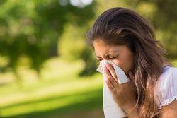 Що краще не їсти алергікам?