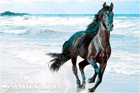 Яким кольором рік дерев'яної коні