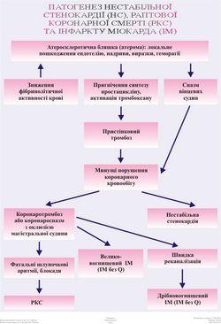 Підшлункова залоза. основні симптоми захворювання
