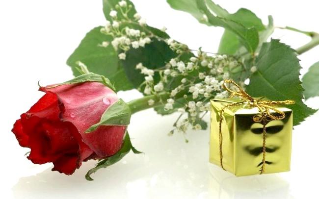 Подарунок жінкам-колегам на 8 березня