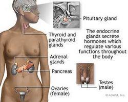 Причини і лікування апраксии