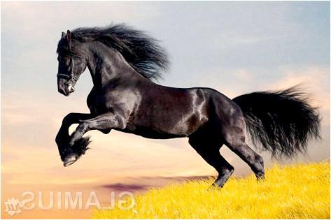 Прикмети на рік зеленої дерев'яної коні