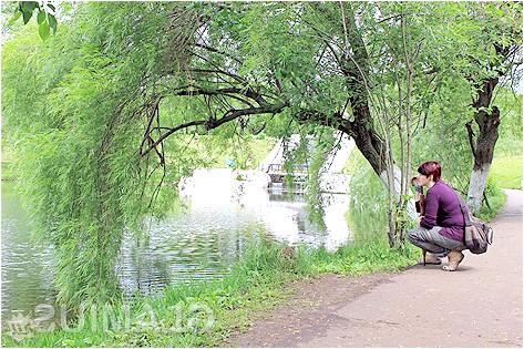 Фото - Прогулянка в парку