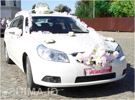 Фото - Номерні знаки весільного авто