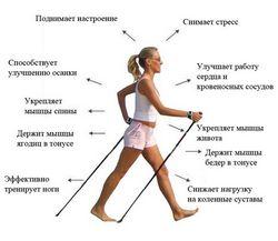 Користь спортивної ходьби