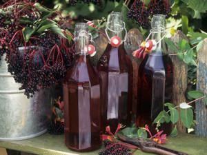 Вірні рецепти наливок на спирту